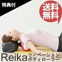 【在庫あり】\ページ限定・マジッククロス付/ REIKA リノベーショ...