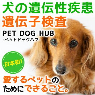 【送料無料】犬の遺伝性疾患遺伝子検査キット「PET DOG HUB-ペットドッグハブ-」愛犬のために知っておきたい 遺伝性疾患のこと 医師のアドバイス付き! 安心の国内検査♪