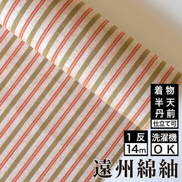 遠州綿紬 S-37 -土筆(つくし)-綿 着物 洗える着物 大人可愛い おしゃれな きれいめ