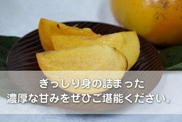 【送料込】広島産太秋柿(8〜10個入り)