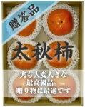 太秋柿贈答品(6〜8個入り)