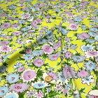 ハグルマの花
