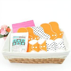 【布ナプキン 10枚 洗剤&携帯袋セット】オーガニック 送料無料 おりもの 昼用 夜用