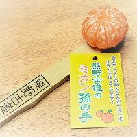 熊野古道のミカン孫の手 #食品サンプル,職人手作り