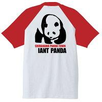 南紀SHIRAHAMA-PANDATシャツ半袖白×赤