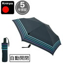 折りたたみ傘(マツコの知らない世界で紹介)Pentagon72 スマホの半分の重さのお取り寄せ