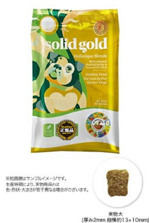 ソリッドゴールド ホリスティックブレンド 3kg×2袋セット(プレゼント付き)
