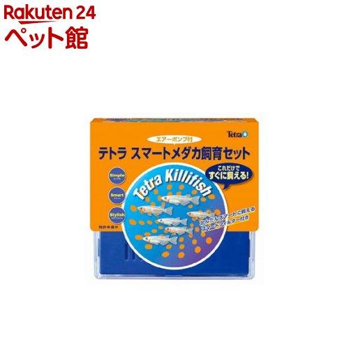 テトラスマートメダカ飼育セットSP-17KF(水槽容量5L)(1コ入) Tetra(テトラ)  爽快ペットストア