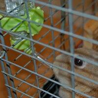 ミニアニマンウサギ専用浄水ドリンカー