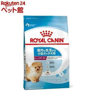 ロイヤルカナン サイズ ヘルス ニュートリション ミニインドアパピー(4kg)【d_rc】【d_rc15point】【ロイヤルカナン(ROYAL CANIN)】[ドッグフード][爽快ペットストア]