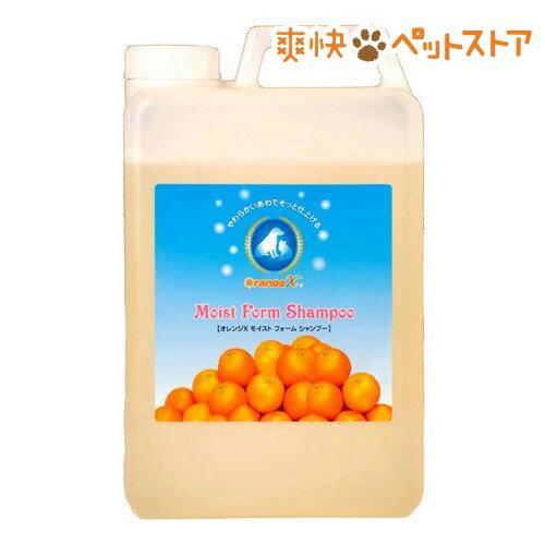 オレンジエックス モイストフォームシャンプー(2L)【オレンジエックス(オレンジX)】[犬 シャンプー]【送料無料】[爽快ペットストア]