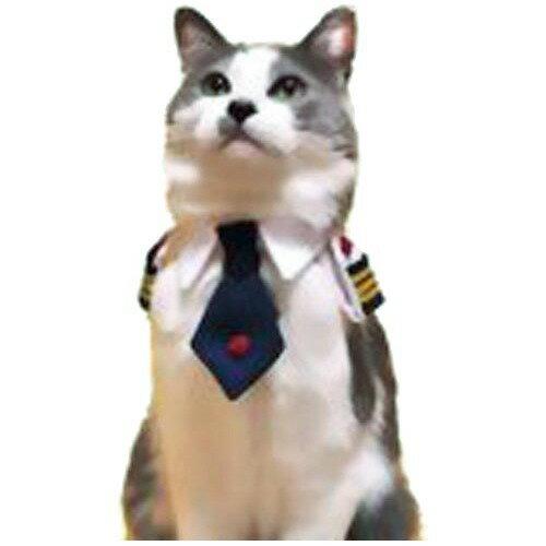 キャットプリン レディースにゃん 襟章ネクタイシャツ ローズ(1枚入)[爽快ペットストア]