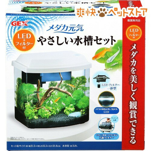 ジェックス メダカ元気 LED+フィルター付やさしい水槽セット(1セット)【GEX(ジェックス)】[爽快ペットストア]