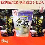 令和元年産新米☆極上味わい福セット☆特別栽培米中魚沼産コシヒカリ6kg