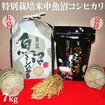令和元年産新米☆極上味わい彩セット☆特別栽培米中魚沼産コシヒカリ7kg