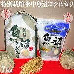 令和元年産新米☆極上味わい寿セット☆特別栽培米中魚沼産コシヒカリ7kg