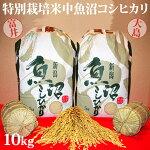 令和元年産新米☆極上味わい松セット☆特別栽培米中魚沼産コシヒカリ10kg