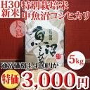 平成29年産新米☆特別栽培米中魚沼産コシヒカリ5kg(大島さん)