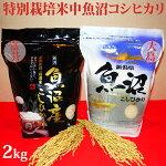 令和元年産新米☆極上味わいお試しセット☆特別栽培米中魚沼産コシヒカリ2kg