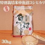 令和元年産新米☆特別栽培米中魚沼産コシヒカリ30kg(富井さん)