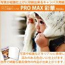 インクジェットキャンバス地「ProMax彩華」 A4(210...