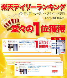 楽天ランキング入賞ハニカムスクリーン