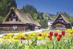 ジグソーパズル 300ピース チューリップと藁葺き屋根の家(岐阜) 26x38cm 03-886