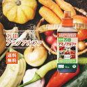 【肥料】【送料無料】植物本来の生命力を引き出す!万田アミノア...