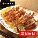 【大阪王将】黒豚餃子48個(ぎょうざ・ぎょーざ・ギョーザ・国内製造・黒豚)