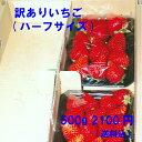 訳ありいちご 減農薬・無化学肥料 ご家庭用におすすめ 愛知県産 ゆめのか フルーツ 500g(250g×2パック)【送料込】