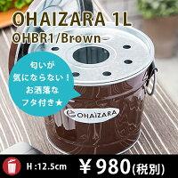 OHBR-1