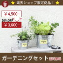 期間限定【ガーデニングセット】UM6(4.5Lサイズ・シルバー)+UM...
