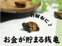 パワーストーン【ポーチ付き】 銭亀 置き物 風水 タイガーアイ 水晶 約0.5グラム 約7mm×10mm天然石 パワーストーン