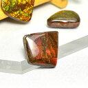 パワーストーン アンモライト 原石ルース(赤緑系)置き物参考サイズ:約12...