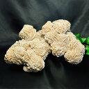 送料無料   現品限り メキシコ産 砂漠のバラ(デザートローズ) 重さ:...
