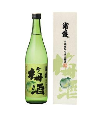 浦霞 「梅酒」720ML【宮城県)】アルコール:12〜13度。
