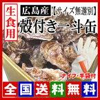 生牡蠣 生食用 殻付き牡蠣 一斗缶(約100個)[サイズ無選別] 牡蠣の大きさは大小様々です。【ナイフ・手袋付】/牡蠣 殻付き/牡蠣 生食 ※商品のお届けは12月30日(土)までとなっております。