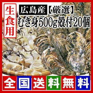 【期間限定】生牡蠣 生食用 むき身500g殻付き20個セット  広島牡蠣(サイズ選別 厳選品)[産地直送] 鮮度と美味しさが違います! [贈答用/お歳暮] 化粧箱入