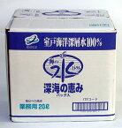 深海の恵み 室戸海洋深層水(業務用)20L入り硬度28送料込(送料込の価格)関東〜九州の方用