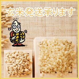 白米・玄米をお選びいただけます。