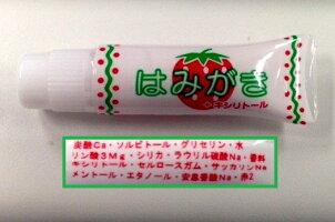 ロマンスカー歯ブラシセット