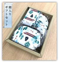 【和布華の和小物】小田急ロマンスカーGSE4.6寸ガマ口ポーチ(L)