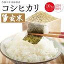 コシヒカリ 玄米 10kg (5kgX2)送料無料 令和二年...