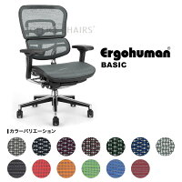 ≪新モデル≫[Ergohuman]エルゴヒューマンベーシック(EH-LAM)ハイブリッド【肘付】【送料無料】完成品お届け(組立て済)エルゴヒューマンチェア【P0920】05P24sep10【YDKG-f】イス椅子