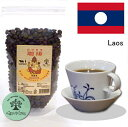ラオス 農薬や化学肥料を一切使わない生豆100% 珈琲 アラビカ・ティピカ種 100%コーヒー豆 100g×2袋