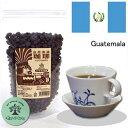 グァテマラ・農薬、化学肥料を一切使わない生豆使用の珈琲100g×2袋  豆or粉〔グリーンアイズcoffee〕