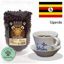 ウガンダ・農薬、化学肥料を一切使わない生豆使用の珈琲100g×2袋 豆or粉 〔グリーンアイズcoffee〕