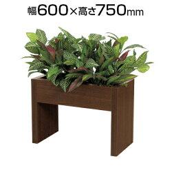 インテリアグリーンパーティションエバーグリーンゼブラブッシュS幅600×高さ750mm【ホワイト・ダーク】