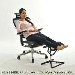 【お得セット】エルゴヒューマンベーシックロータイプ+オットマンセットオフィスチェア肘付き腰痛腰痛対策事務椅子パソコンチェアエルゴ椅子イス足置きエルゴヒューマンベーシック【ErgohumanBasic】【ポイント10倍】