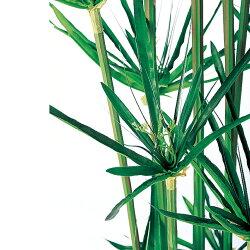 観葉植物人工樹木シペラス鉢高さ1000mmSサイズ鉢:簡易ポット